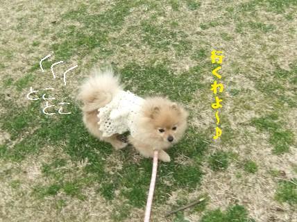 syouwa2.JPG