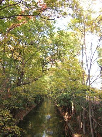 tamagawajousui1.JPG