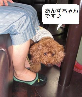 yoyogi4.JPG