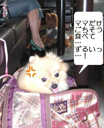 yoyogi5.JPG