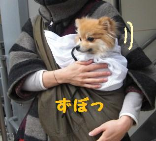 yumemi93.JPG